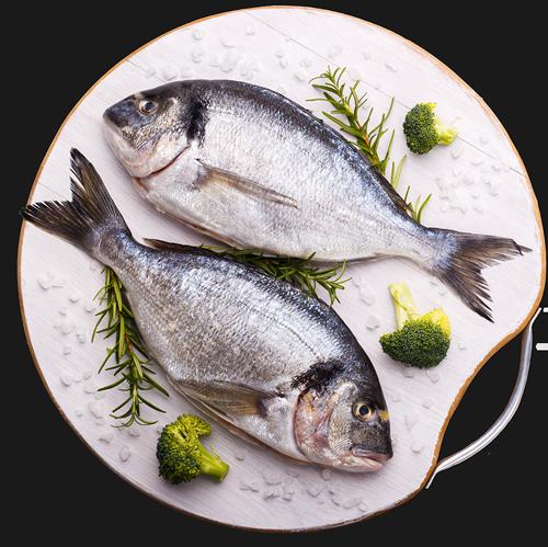 ghadir meat and fish